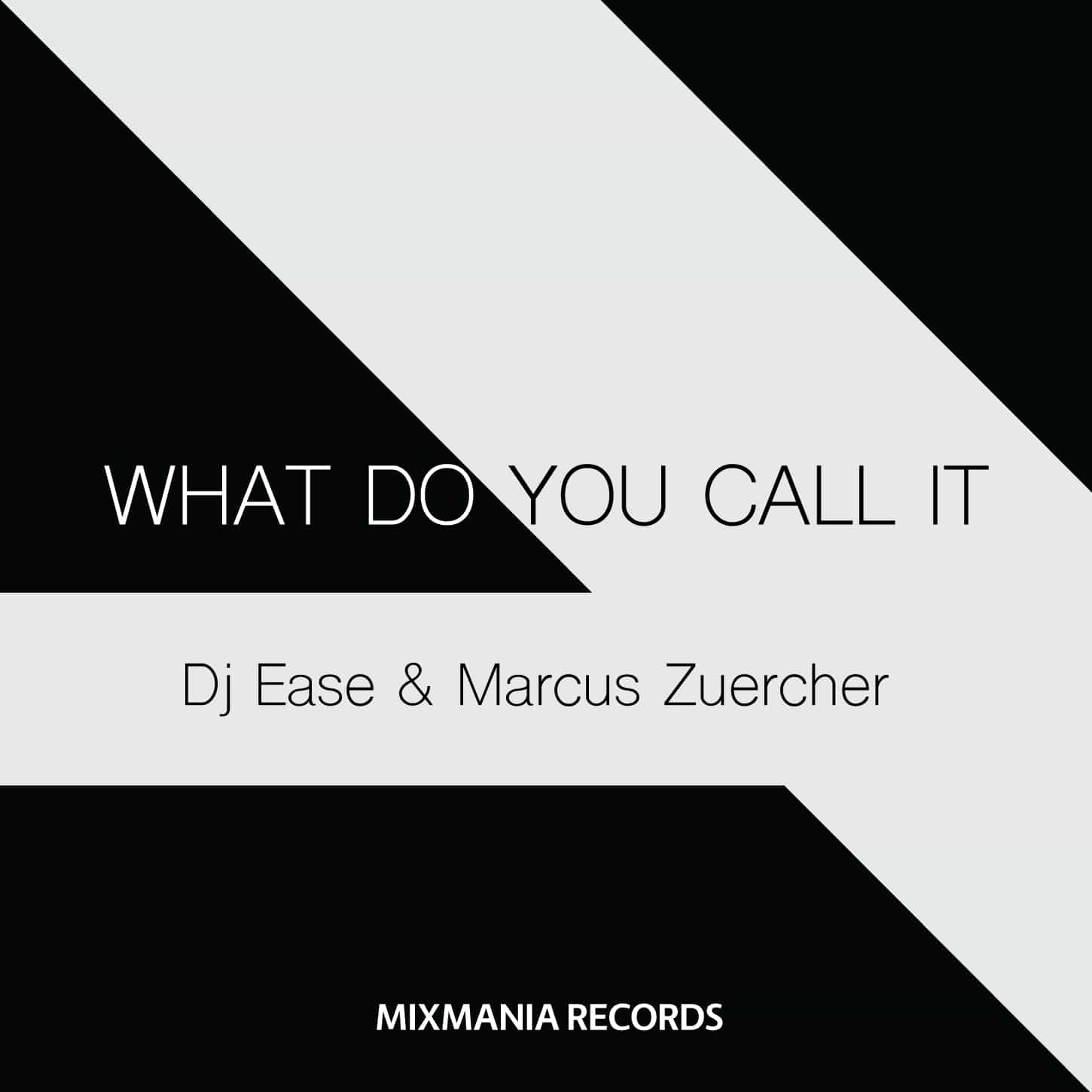 What Do You Call It (Original Mix) By Dj Ease And Marcus Zuercher Art Work
